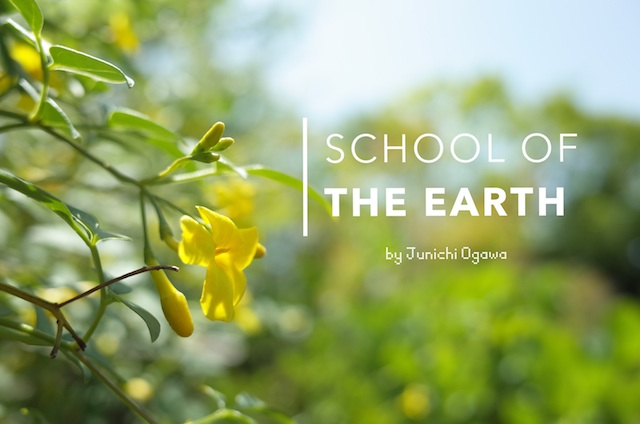 school of the earth mini